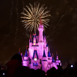 Imagery ~ Orlando Disney World