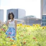 Melbourne City Sunflowers